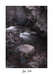 Sin título-1 (anahí tomillo) Tags: nikond7500 sigma1750f28 lightroom bosque forest naturaleza nature paisaje landscape agua water rio river rocas rock otoño autunm longeexposure largaexposición