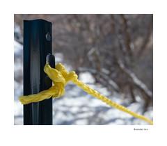 Boundaries (agianelo) Tags: nylon yellow rope metal post
