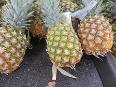 January 19: Pineapples (earthdog) Tags: 2019 canon canonpowershotsx730hs powershot sx730hs food edible pineapple fruit lucky shopping store market grocerystore project365 3652019