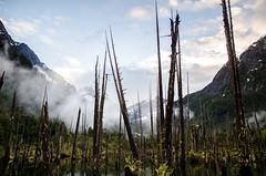 Tagua-24 (NicolasMunozFotografia) Tags: landscape awesomeshot awesome shot photo incredible increible chile cochamo tagua parque clouds reflection reflex nikon sigma 28 raining rain sadnes sadness after storm
