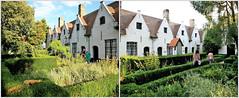 Parc Godshuis De Meulenaere, Bruges, Belgium (claude lina) Tags: claudelina belgium belgique belgië parcgodshuisdemeulenaere garden maisons houses architecture