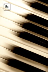 [blurred lines low res] (RHiNO NEAL) Tags: rhino neal rhinoneal neil piano keys black white notes blurred retro vintage music getty images