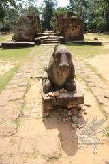 Angkor_Preah_Ko_2014_18