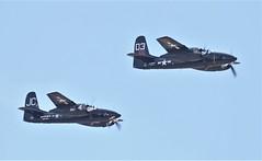 Grumman F7F Tigercats Over Chino (GEM097) Tags: airplanes aircraft airshow planesoffame chinoairport grummanf7ftigercat n909tc nx700f