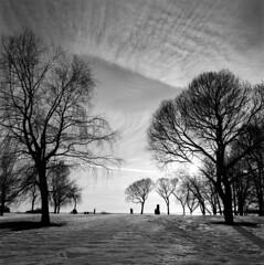 img013 (Samuli Koukku) Tags: hasselblad distagon zeiss fuji acros bw blackwhite filmphotography 6x6 mediumformat rodinal landscape helsinki finland lauttasaari winter 500cm 50mm epsonv850 sunset