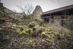 _DSC0192 (Foto-Runner) Tags: urbex lost decay abandonné épave citroen ruine rouille mousse