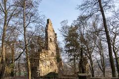 Hier lebte um 1140 die heiligen Hildegard von Bingen. Here lived around 1140 the holy Hildegard of Bingen. (reipa59) Tags: ruinen pfalz disibodenberg klosterruine ruine staudernheim monasteryruin bäume countryside earlymorning mystic architektur sunbeams rhinelandpalatinate tree wood old sunrays baum sun kloster kirche forrest gebäude sonnenstrahlen frühmorgens roadtrip germany mystisch kapelle hildegardvonbingen ruin wald frühling monastery rheinlandpfalz sunbeam morgensonne glan nahe