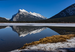 Stunning day at Banff (Robert Grove 2) Tags: light stunning banff reflections rundle mountain canada