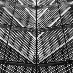 609 Main at Texas - Window Detail 10 (Mabry Campbell) Tags: 609main 609mainattexas harriscounty hines houston pickardchilton texas usa unitedstatesofamerica architecture blackandwhite building design detail downtown exterior facade glass image modern nopeople officebuilding photo photograph skyscraper squarecrop window windows f56 mabrycampbell march 2018 march102018 20180310untitledcampbellh6a2401 40mm ¹⁄₄₀sec 320 ef1740mmf4lusm fav10