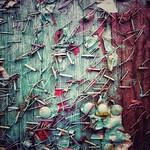 Urban Palimpsest thumbnail
