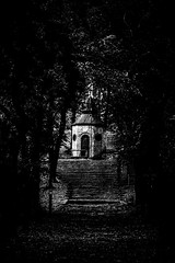'It's still magic even if you know how it's done...' (Shadows Of The Sun) Tags: canon bw byn blackandwhite blancoynegro monochrome nature path photography photographer forest woods chapel church lost lostplaces hiddenplaces shadowsofthesunphotography stairs