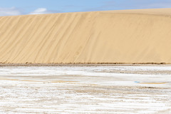 _RJS3836 (rjsnyc2) Tags: 2019 africa d850 desert dunes landscape namibia night nikon outdoors photography remoteyear richardsilver richardsilverphoto safari sand sanddune travel travelphotographer animal camping nature wildlife