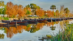 Colours of mediterranean winter (gerard eder) Tags: world travel reise viajes europa europe españa spain spanien valencia catarroja landscape landschaft lake lago lagodelaalbufera landwirtschaft harbour hafen harbor boats boote barcas winter invierno reflections spiegelung wasser water tree trees river canal paisajes panorama outdoor natur nature naturaleza