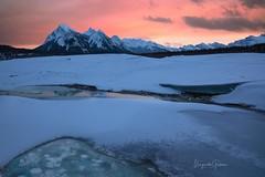 Abraham Lake (Margarita Genkova) Tags: rockymountains ice snow river mountains sunset bubbles banffnationalpark abrahamlake