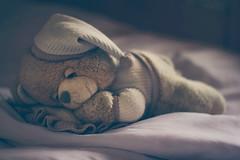 Sweet dreams (Inka56) Tags: bear toys pillow sleeping cap bed teadybears pajamas