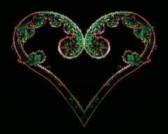 Happy Valentine's Day (stephaniepluscht) Tags: 2019 fern frond heart photoshop valentine valentines day