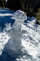 0086_DSC_2536 (marcellszmandray) Tags: kirándulás tél lucskaifátra szlovákia hó fátra