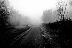 foggy outside me (Gerrit-Jan Visser) Tags: bewerkt morning foggy bnw blackandwhite bicycle road trees amsterdam wood