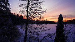 MERRY CHRISTMAS TO  EVERYSOUL!    [DSC01846a] (SeppoU [Read 'About' for info!]) Tags: suomi finland lohja auringonlasku sunset jouluaatto christmaseve 2018 nex