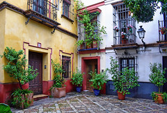 Colourful Patio (Jocelyn777) Tags: patio courtyard patioandaluz patiosevillano courtyards architecture buildings colourful doorsandwindows balconies plantsandflowers sevilla andalucia spain travel