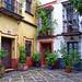 Colourful Patio