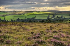 Exmoor landscape (Baz Richardson (catching up again!)) Tags: somerset exmoor landscapes heather moorland woodedvalleys
