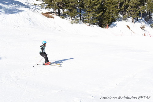Alpine Races I & II Feb 2019_02