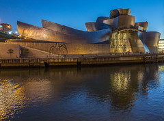Guggenheim at night (Andy Nutter) Tags: bilbao basque