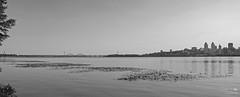 Літній Дніпро (ucrainis) Tags: panorama panoramic landscape black white bw monochrome river dnieper dnipro ukraine nature buildings city cityscape riverbank riverscape reflection bridge