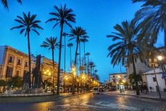 Calle  Alameda, Jerez (ZAP.M) Tags: calle palmeras monunmentosemanasanta jerez cádiz andalucía españa lahoraazul zaapm mpazdelcerro flickr sony sonyevil sonyalfa5100