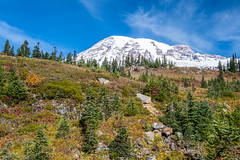 Rainier (jeff's pixels) Tags: mountrainiernationalpark mountrainier mountain landscape pnw outdoors washington nikon d850 nikkor nature bird plane bus