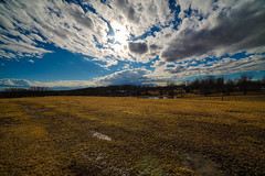 Sunset field on blue sky and clouds on the farm (DDM Imaging) Tags: field sky grass landscape sun sunset dusk blue country countryside spring color colour colors colours camera sony a7ii a7m2 nature new outside outdoors farm farmland clouds light rokinon lens