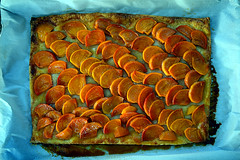 DSC_7902-61 (jjldickinson) Tags: tart persimmon fruit yuzu liqueur pastry baking dessert japanoise iichiko shochu yuzushochu sanwashurui longbeach wrigley nikond3300 105d3300 nikon1855mmf3556gvriiafsdxnikkor promaster52mmdigitalhdprotectionfilter
