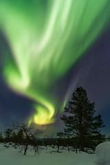 Amazing Northern lights! (Thomas.Kroon) Tags: lapland finland northern lights aurora borealis snow