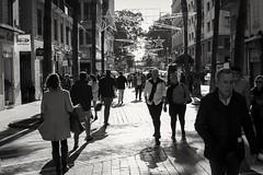 Restos de Navidad (gabrielromeroplana) Tags: navidad christmas malaga malagaciudadgenial spain blanco negro black white bn bw monochromatic street photography fotografiacallejera calle sony a6000 sigma 30mm 14