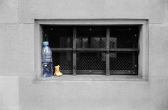Nach dem Imbis (After the snack) (der Sekretär) Tags: apfel apfelgripsch detail einwegflasche fassade fenster flasche frucht gitter gitterstäbe kellerfenster kerngehäuse mauer mauerwerk obst pet steine streetphotography wasser wasserflasche ziegel analogue apple applecore barred bars bottle brick cellarwindow closeup core disposable einweg facade façade film front fruit leavebehind leftbehind nonrefillable nonreturnable stone vergittert wall water waterbottle window zurückgelassen zurücklassen analog