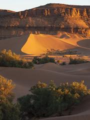 Golden hour (Markus Jansson) Tags: morocco sahar desert dunes mountain landscape nature goldenhour