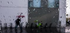 2019-04-02 - Mardi - 92/365 - Rainy Days - (Boogie, Eminem) (Robert - Photo du jour) Tags: 2019 avril france velib parapluie goutte rainydays boogieeminem pluie vert vincennes rouge