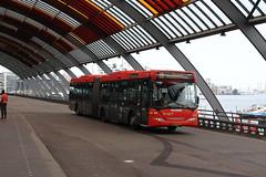 EBS, 1019 (Chris GBNL) Tags: ebs egged eggedbusservice bus 1019 bzpd53 scaniaomnilink rnet