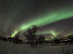 Tromsö 2019 (257 von 699) (pschtzel) Tags: nordlicht norwegen2019 tromso