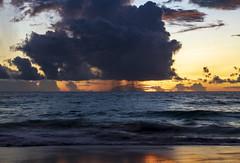 Anse Intendance / Пляж Анс Интенданс /explore/2019/02/02 (dmilokt) Tags: природа nature пейзаж landscape море sea пляж beach песок sand пальма palm небо sky облако cloud dmilokt nikon d850