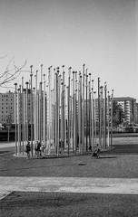 C12_F80_20190204_032_JPEG 2000 (Domenico Cichetti) Tags: milano citylife olympus olympusxa studional fomapan100 monocrome bw blackwhite blackandwhite bn argentique selfdevelope architecture