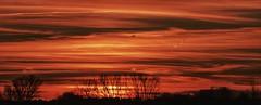 Dicen que la vejez es la edad del atardecer. Pero hay atardeceres que todos se paran a mirar. (elena m.d.) Tags: sunset atardecer nikon d5600 sigma sigma105 new avion clouds sky red