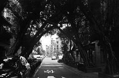 (Janeprogram) Tags: пленка 35mm bnwphotography filmphotography blackandwhite kodaktmax400