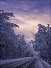 Convergences (Gio_guarda_le_stelle) Tags: snow road cold ice freeze sila calabria freddo vento sunset pinksky clouds cool