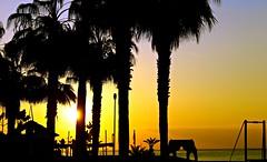 La Caleta de Vélez- amanecer tropical (portalealba) Tags: lacaleta málaga axarquía andalucía españa spain portalealba canon eos1300d