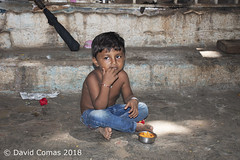 Mumbai - Fort (CATDvd) Tags: nikond7500 bhāratgaṇarājya india índia bombai bombay mumbai maharashtra republicofindia repúblicadelíndia repúblicadelaindia भारतगणराज्य september2018 catdvd davidcomas httpwwwdavidcomasnet httpwwwflickrcomphotoscatdvd fort फोर्ट portrait retrat retrato ngc