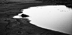 Wet sand I (mgschiavon) Tags: blackandwhite blackwhite bw nature texture abstract contrast outdoors sea beach california