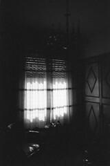 (analogicmoment) Tags: 35mm analogphotography filmphotography blackandwhite bw kodaktrix pushedfilm kodakhc110b yashicataf pointandshoot keepfilmalive ishootfilm buyfilmnotmegapixels filmisnotdead