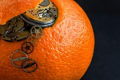 1/30: A Clockwork Orange (judi may) Tags: macromonday macro macromondays aprilfool theweeklymonthlychallenge april2019amonthin30pictures clockworkorange watchparts metal texture black blackbackground canon5d tabletopphotography closeup orange citrus fruit